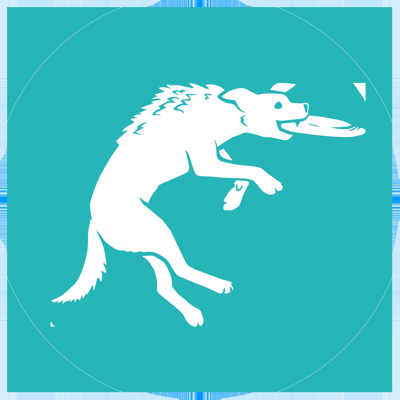 K9 Spirit Organization
